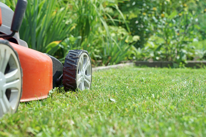 Entretien Parcs et Jardins